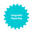 Integrated Reporting: Experiences from KPMG, PwC, Experts, Practitioners