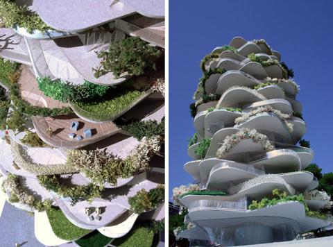 urban-cactus