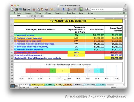 SustainabilityAdvantageWorksheets