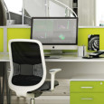 Greening Offices Without Adding to Landfill